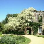 scotney-castle-1389678